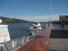 Tamar cruise boat