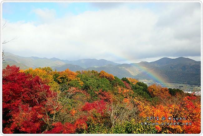 2012-11-27 10.56.42.jpg