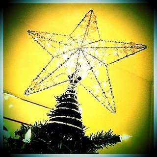 #PAD 7/31: Bright. For a change, we're using star as treetop this year instead of an Angel treetop. #DecemberPhotoDaily #PhotoADay