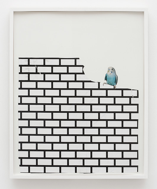 Frances Stark, Bird and Bricks, 2008