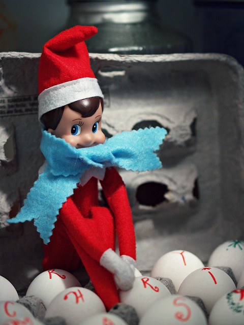 Day 7 : Elf on the Shelf