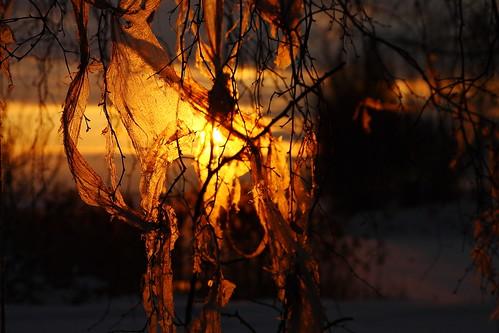 winter sunrise finland scenery december finnish vaasa vasa kaamos