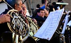 festival(0.0), saxophone(0.0), musician(1.0), tuba(1.0), orchestra(1.0), musical ensemble(1.0), musical instrument(1.0), music(1.0), horn(1.0), brass instrument(1.0),
