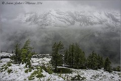 I continuem pujant.  (Alps - Austria)