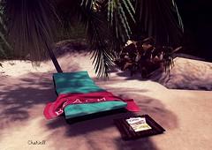 Beach Lounger ...