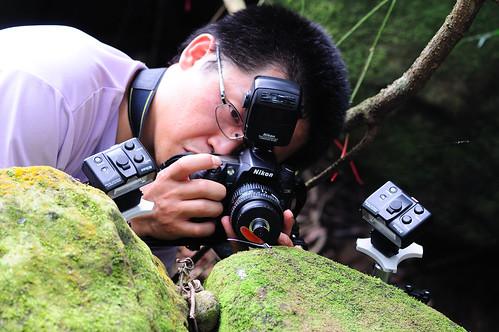 進入自然攝影,專注的神情