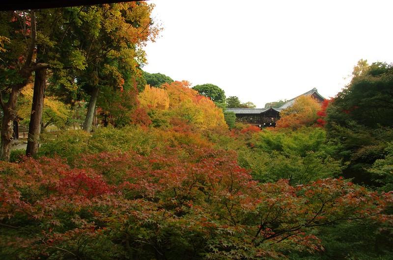 東福寺 #7