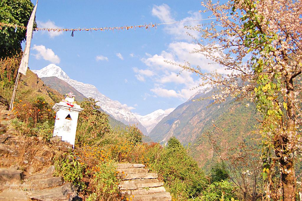 Annapurna Sanctuary Trek Chommrong