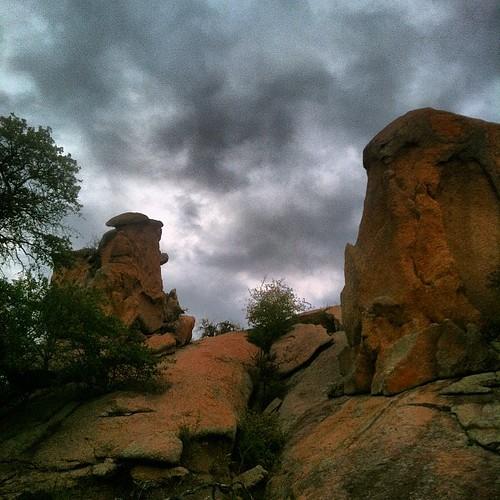 Sentinels.