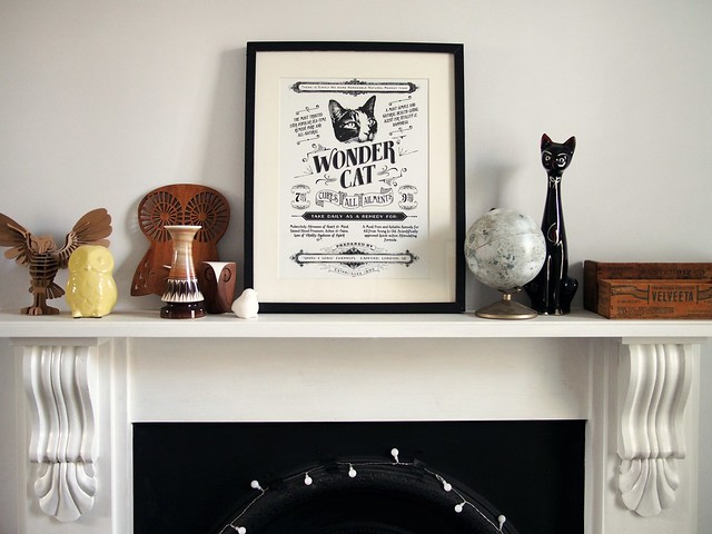 Wonder cat poster