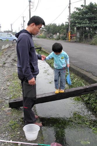 溝渠裡撈蝦子
