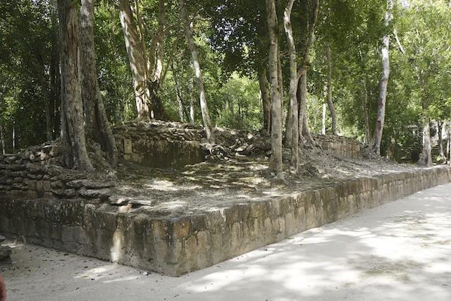 Calakmul 26