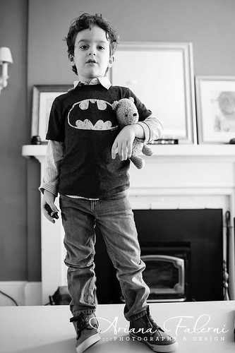 Batman & Bear I