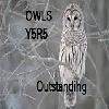H@R Y5R5 Owls
