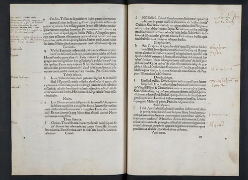 Annotations in Calderinus, Domitius: Commentarii in Martialem