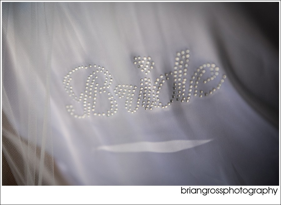 PhilPaulaWeddingBlog_Grand_Island_Mansion_Wedding_briangrossphotography-111_WEB