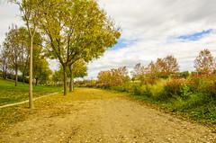 Parque Juan Carlos I - LVIII