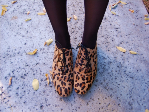 leopardoxford