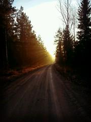 Morgonsol i Kilsbergen..