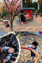 朝散歩 - 恵比寿公園にて (2012/11/28)