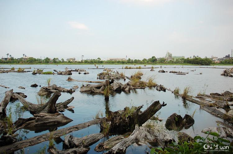 羅東林業文化園區-貯木池03.jpg