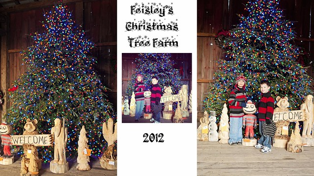 In the Barn Collage