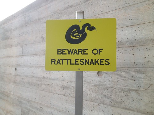 Beware of Rattlesnakes