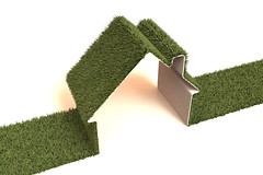 grass, artificial turf, green, hedge, lawn,