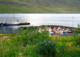 Mini port islandais