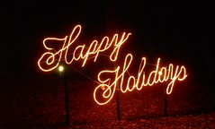 Happy Holidays in Lights