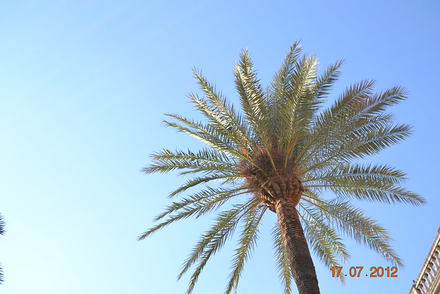matkakuvia 11.-20.7.2012 342