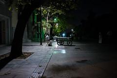 The Night Vendor
