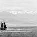 Come Sail Away by LornaTaylor