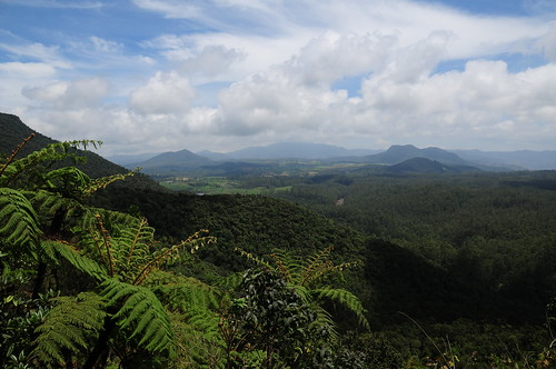travel sky cloud mountains fern nature weather forest landscape sightseeing nobody hills jungle srilanka