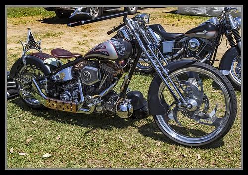 Nice looking Harley Davidson-1=