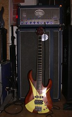 VOGEL Balance-S BASSIX Timid Tiger Custom Bass in front of Monster Bass 400 by Vogel Guitar Concepts