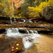 Archangel Falls - Zion National Park by Rich Bitonti