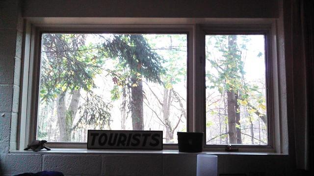 rochester window