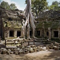 2012 Cambodge