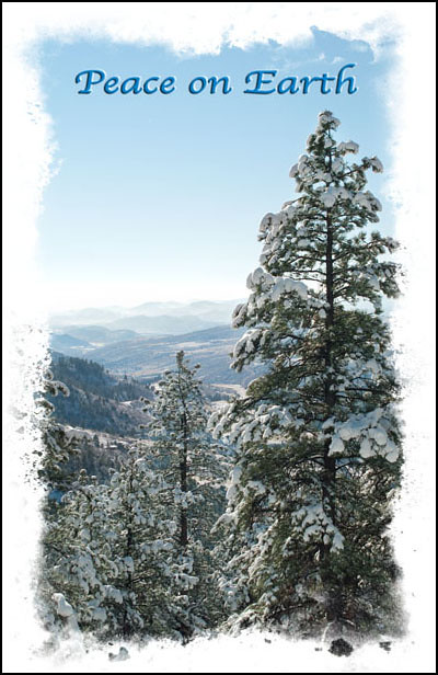 classic natural beauty of a Colorado Rocky Mountain winter with a distant view of blue mountains seen through a picture frame of a snowy pine forest