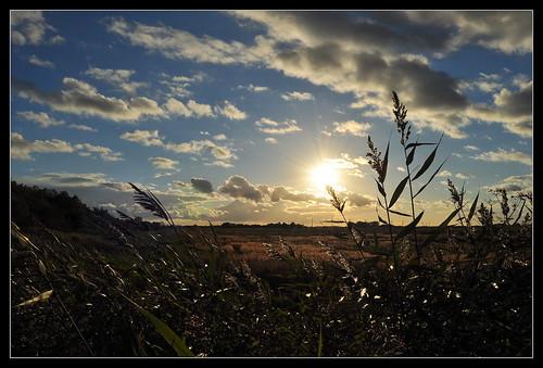 sunset sky cloud sun colour nature clouds denmark nikon colours wind danmark lumen nikond5000