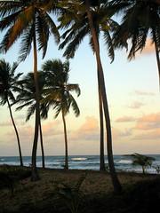 Sunset in paradise? Costa do Sauípe, Bahia, Brazil
