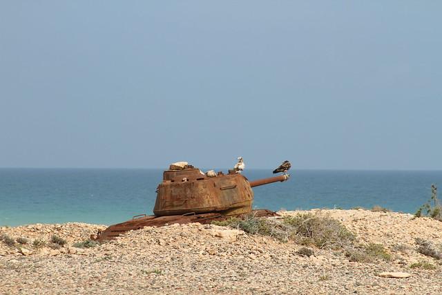 Army-Socotra Island5
