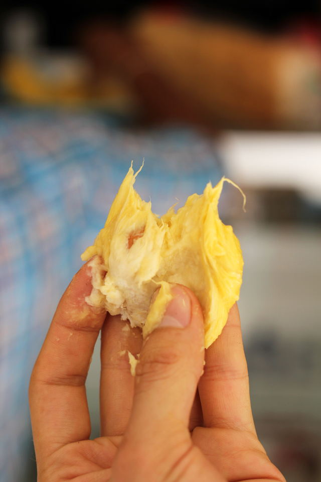 I just took a bite of an extremely custardy delicious durian!