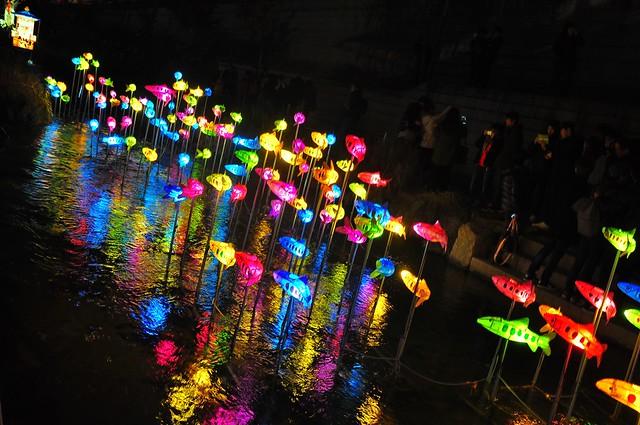 Fishy Reflections at the Seoul Lantern Festival, 2012