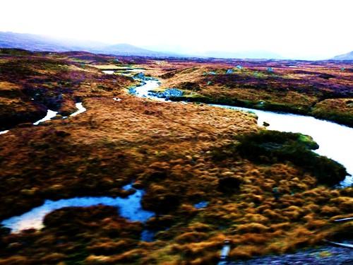 Rannoch Moor Surface