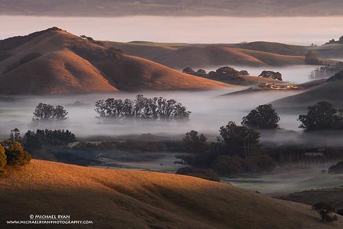 light fog sunrise photography michael ryan hill sonoma wilson petaluma michaelryanphotography