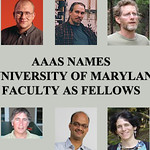 Ten University of Maryland Faculty Named AAAS Fellows