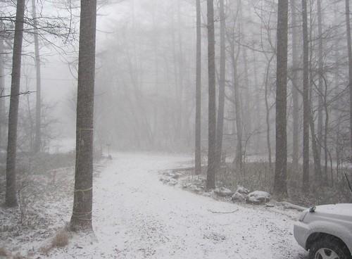 朝の吹雪 2012年12月1日10:39 by Poran111