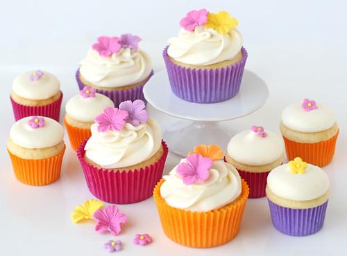 cupcake cases de colores